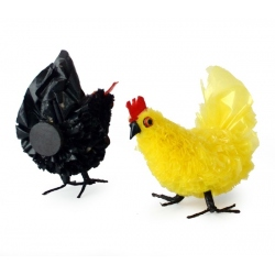 chicken plastic bags, magnet